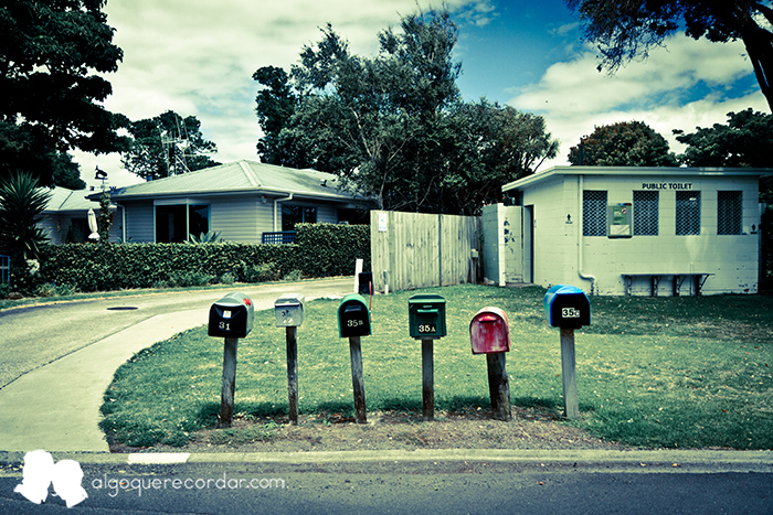 road_trip_Nueva_Zelanda_algo_que_recordar_09