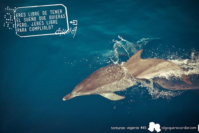 tontunas_viajeras_algo_que_recordar_45