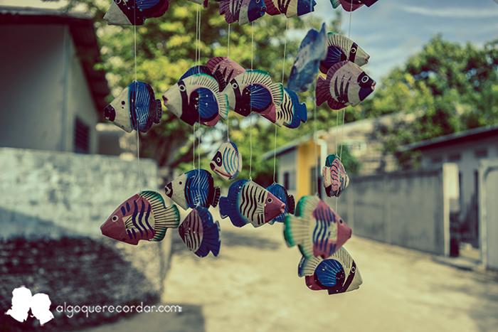quiero_ser_maldiviano_maldivas_algo_que_recordar_08