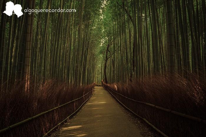 kyoto_algo_que_recordar_13