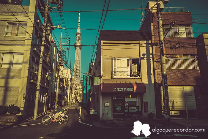 tokyo_algo_que_recordar_10